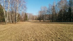 Еще поле
